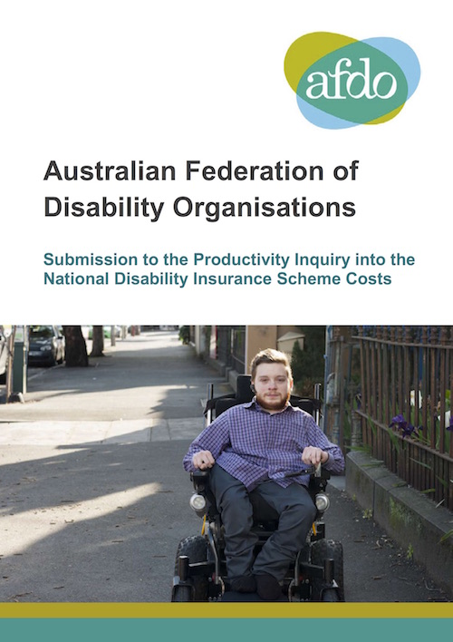 Screenshot of the cover of the submission. It has a photo of Disability Loop Project Officer Carl Thompson using his wheelchair on an inner urban footpath.